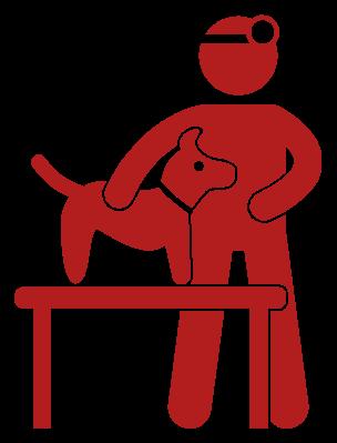 Veterinary Image