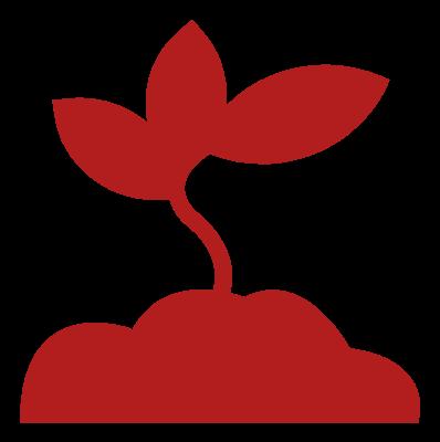 Landscape Gardening Service Image